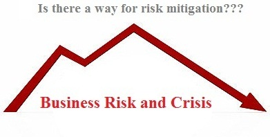 business risk mitigation