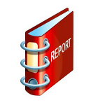 Top 4 types of project report