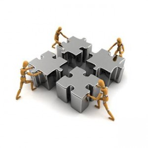 Tips on Building and Organizing a Team