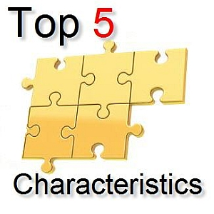 5 characteristics of a good project manager