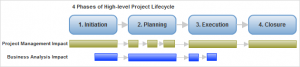 Business Analysis in Project Management
