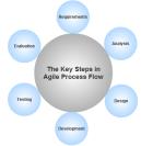Agile process flow